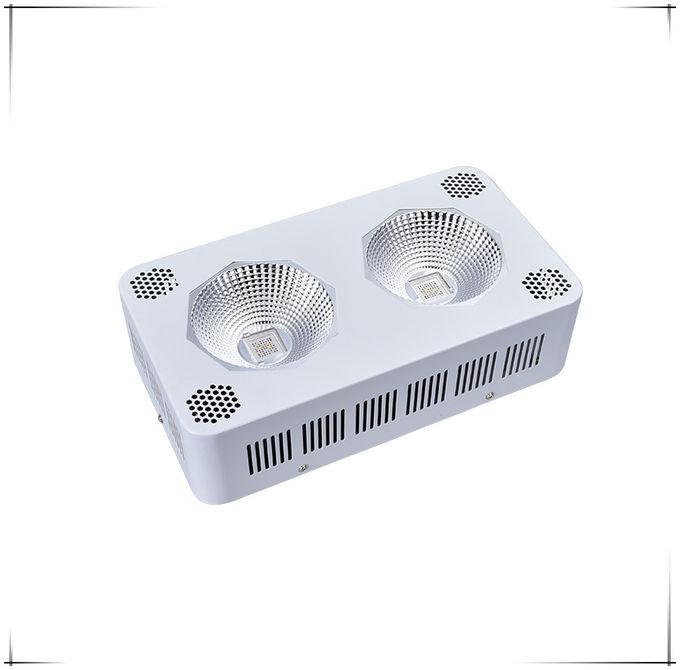 obere grenze 400 der gef hrte watt pfeiler wachsen lichter. Black Bedroom Furniture Sets. Home Design Ideas